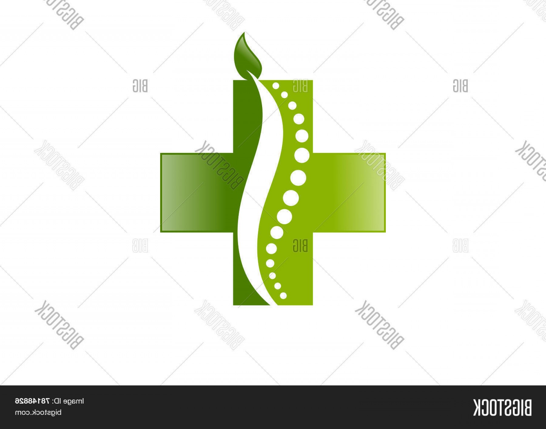 Health Vector Logo: Stock Vector Leaf Cross Medical Chiropractic Vector Logo Design