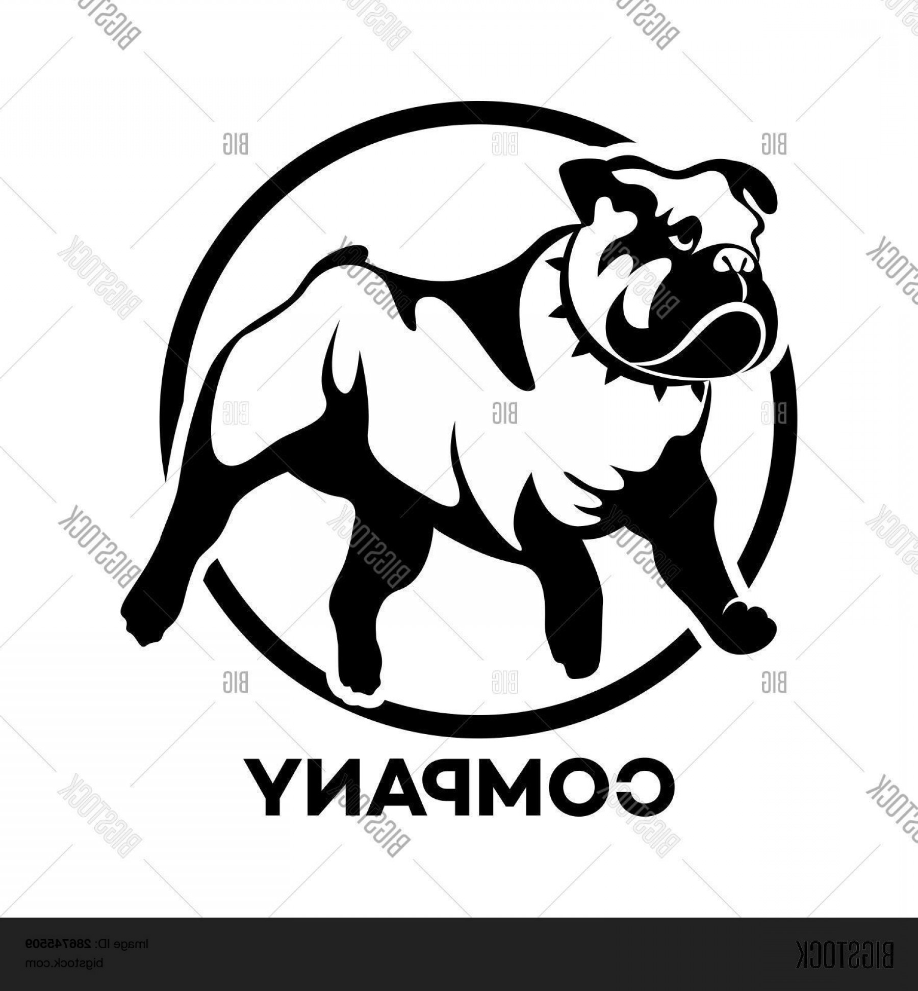 Bulldog Vector Art: Stock Vector Modern Logo Pet English Bulldog Vector Illustration