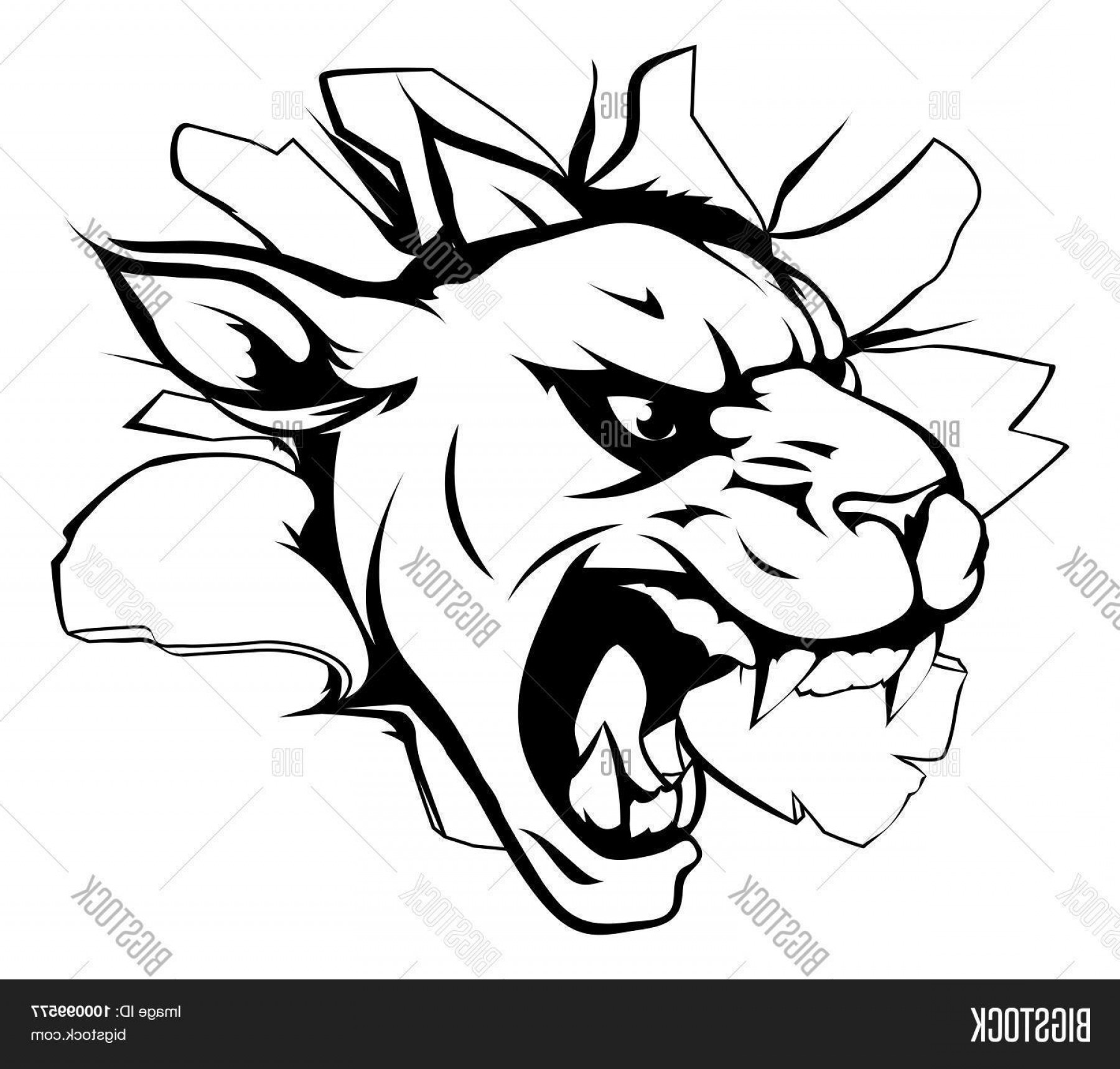 Panther Mascot Vector Sports: Stock Vector Panther Mascot Breaking Through Wall