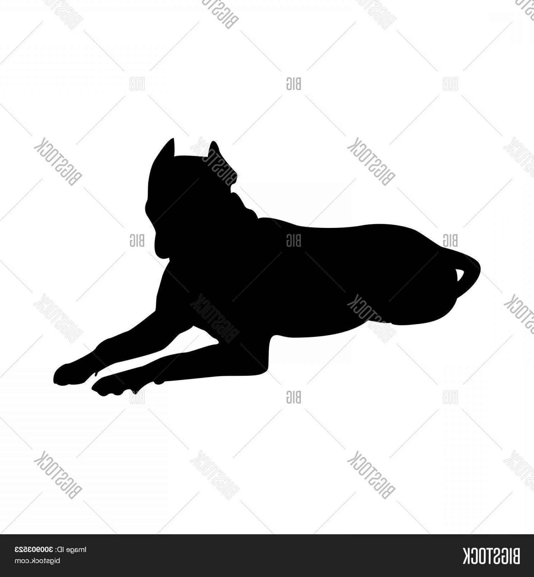 Pit Silhouette Vector: Stock Vector Pit Bull Terrier Dog Silhouette Smooth Vector Illustration