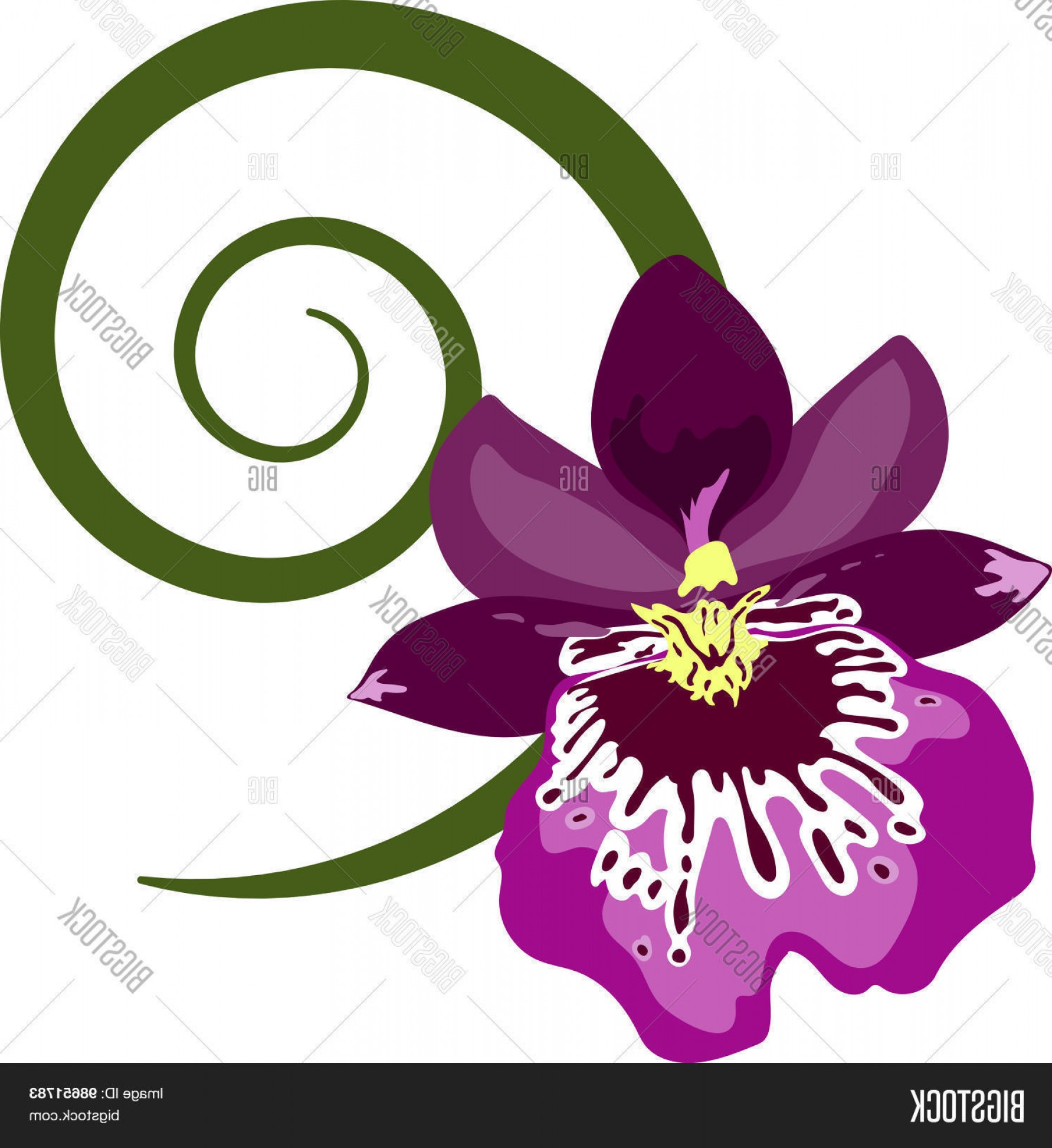 Purple Orchid Vector: Stock Vector Purple Orchid In Flat Style With Simple Green Spiral Sprout