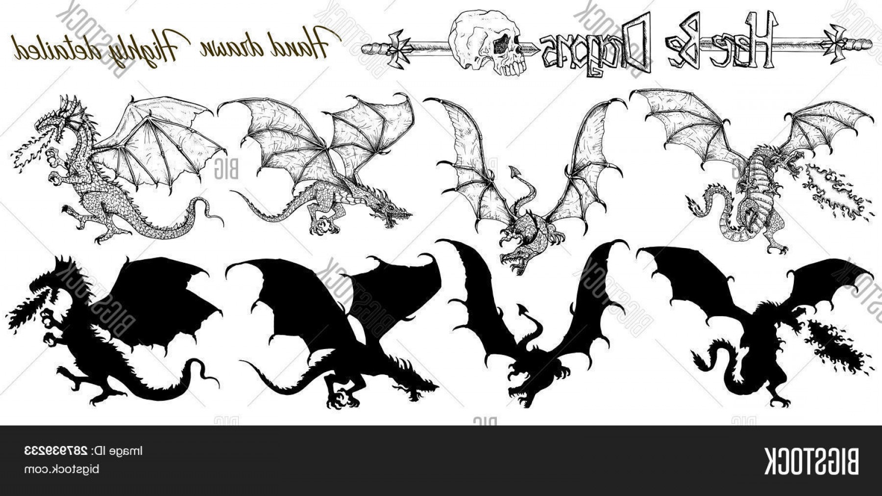 Detailed Tattoo Vector Images: Stock Vector Set With Hand Drawn Realistic Detailed Dragons And Silhouettes On White Vector Sketch Of Tattoo Fan