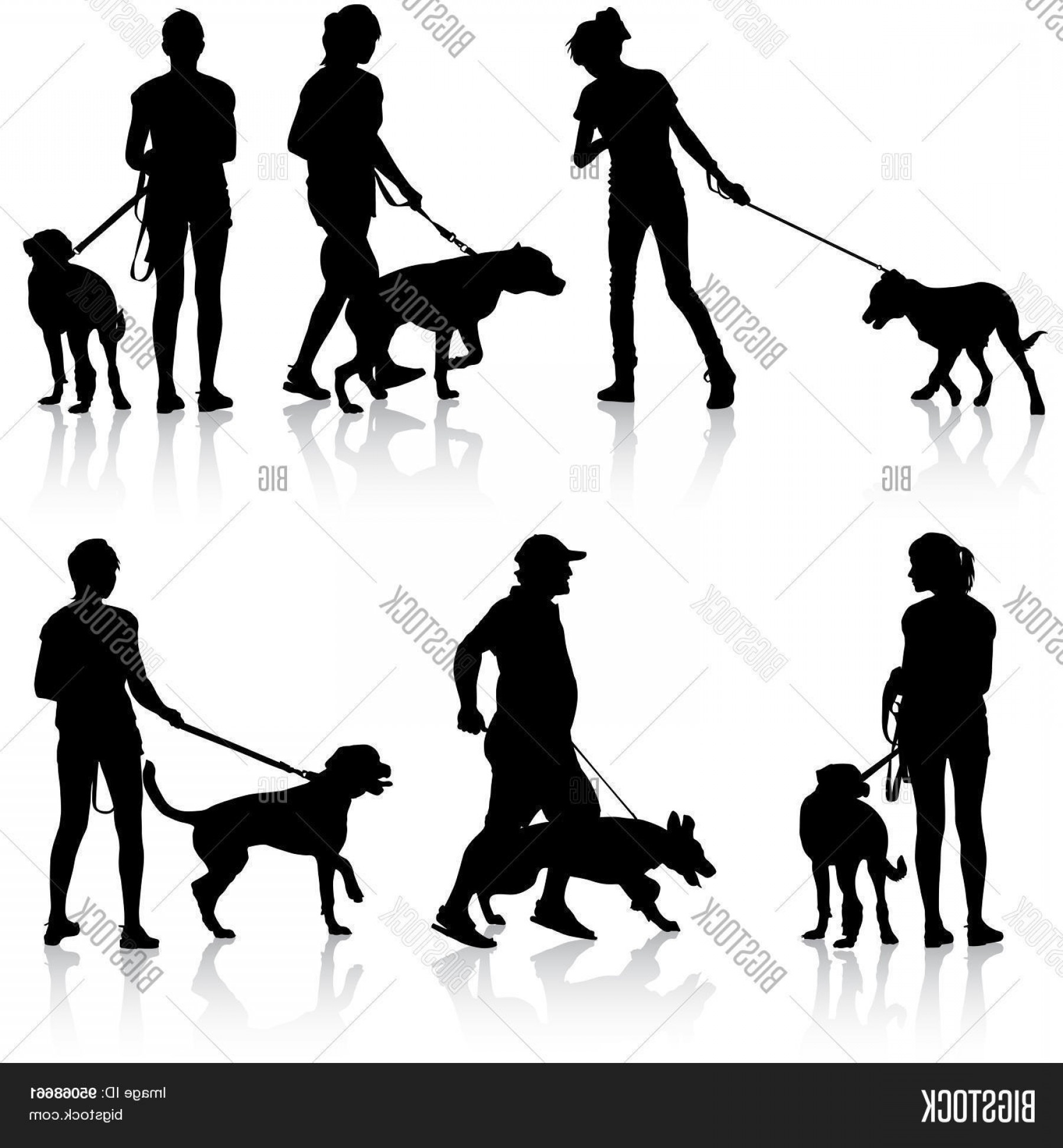 Vector Silhouette Dog Walk: Stock Vector Silhouettes Of People And Dogs Vector Illustration