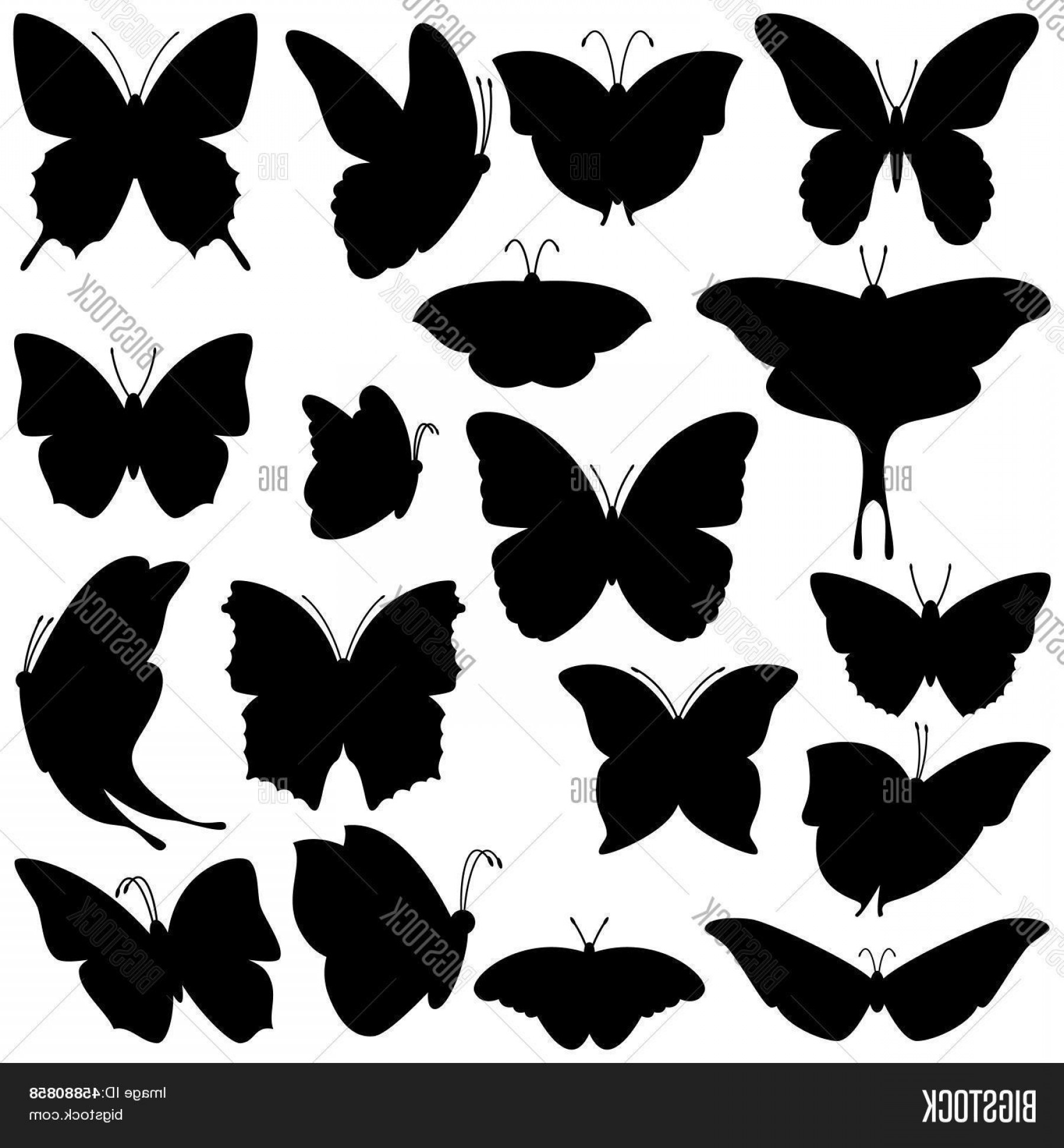 Vector Luna Moth: Stock Vector Vector Set Of Butterfly Silhouettes