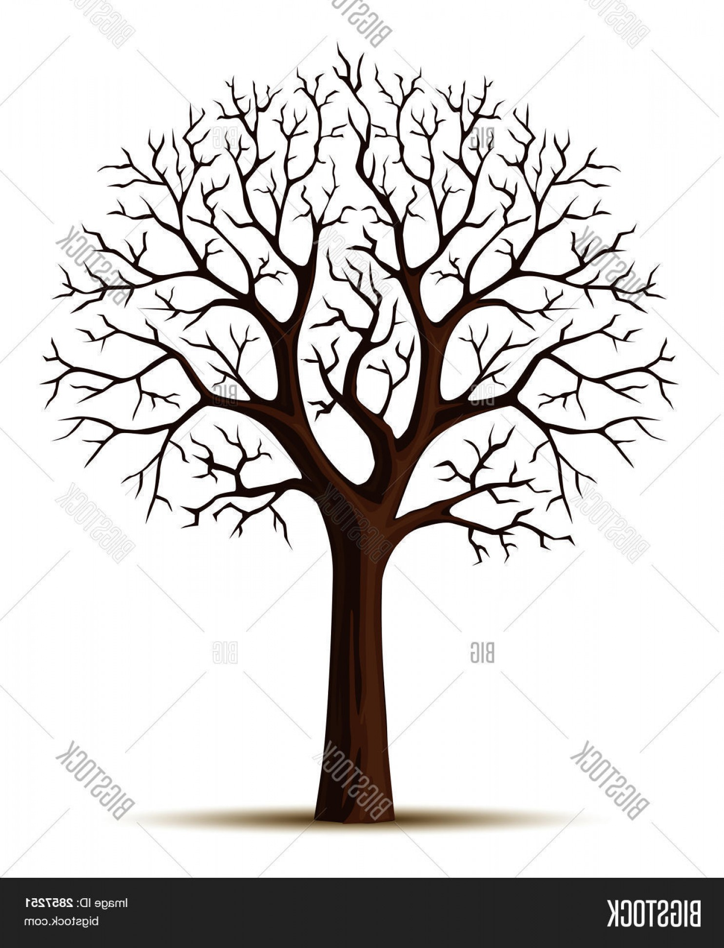 Tree Trunk Silhouette Vector: Stock Vector Vector Silhouette Of Tree Branches Cron