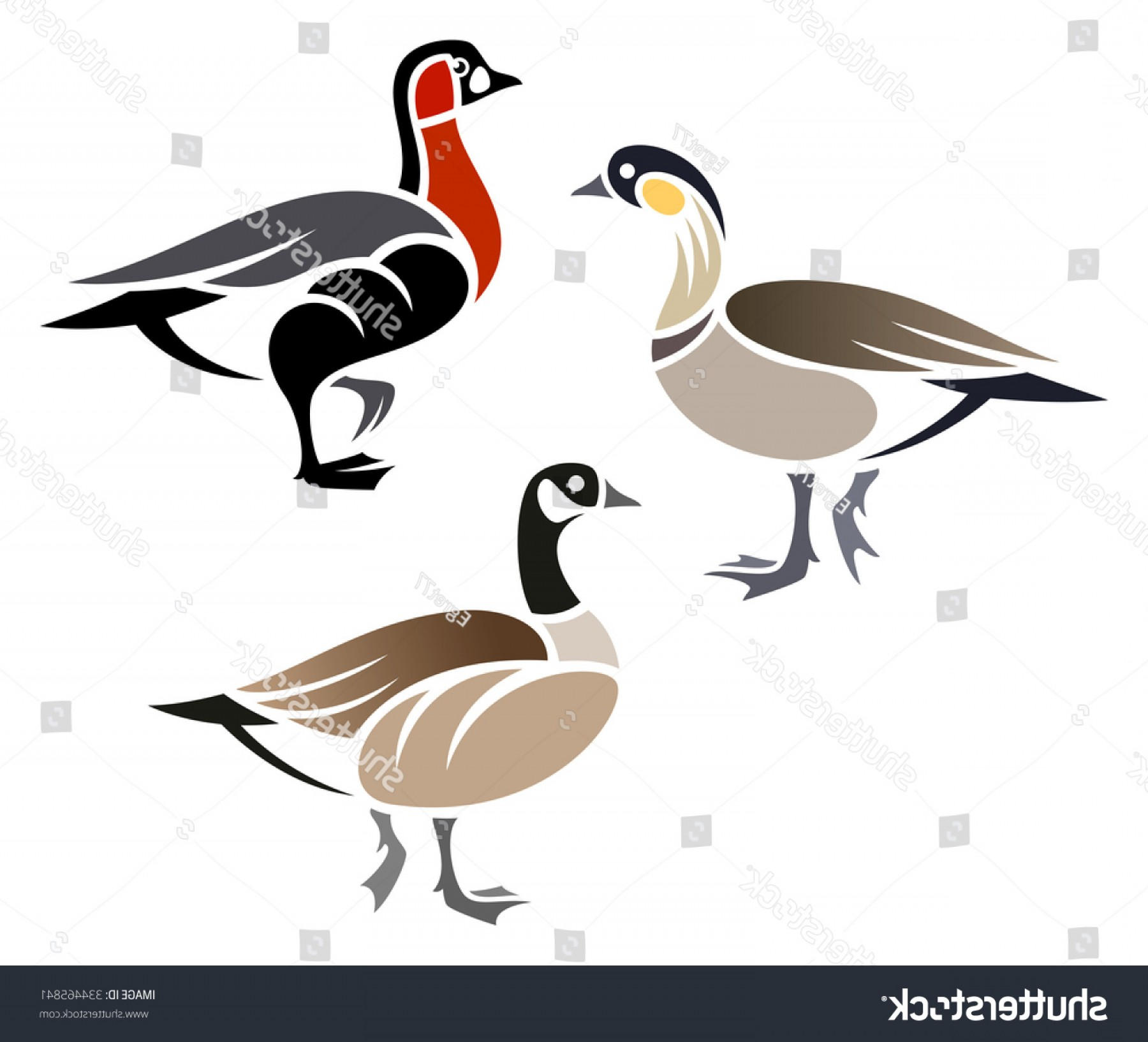 Geese Vector: Stylized Geese Cackling Goose Hawaiian Redbreasted