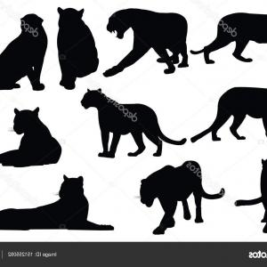 Panther Silhouette Vector: Photostock Vector Leopard Silhouette Gepard Panther