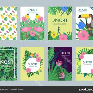 Plant Cards Vector: Stock Illustration Design Template Of Cards With