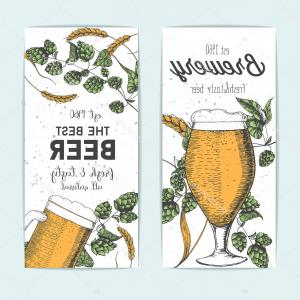 Barley Hops Vector: Stock Illustration Flyers Set Beer Glasses Barley