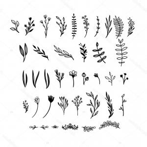 Floral Vector Illustration: Stock Illustration Hand Drawn Floral Vector Elements