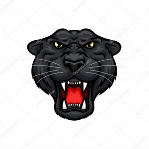 Panther Mascot Vector Sports: Stock Illustration Panther Roaring Head Muzzle Vector