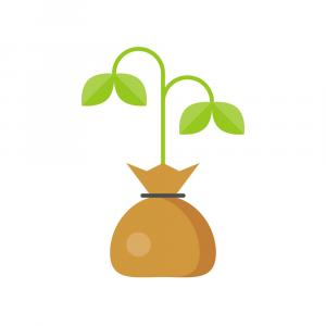 Sprout Icon Vector: Stock Illustration Plant Sprout Icon Vector Illustration