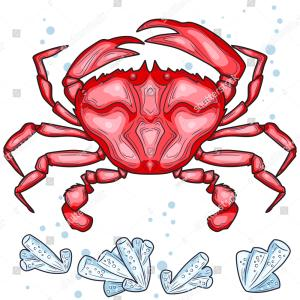Red Crab Vector: Stock Illustration Red Crab Vector