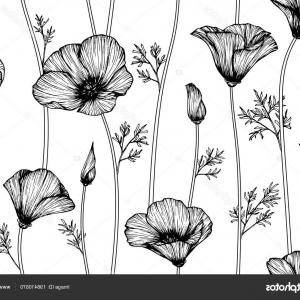 California Black And White Vector: Stock Illustration Seamless California Poppy Flower Pattern