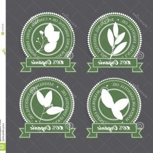 Green Bay Vector: Set Grunge Rubber Stamps Words Madisongreen