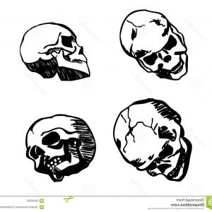 Art Stencil Thug Vector: Stock Illustration Skull Different Positions Hand Drawing Black White Background Vector Image