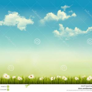 Vector Natural Background Sky: Stock Image Retro Nature Background Green Grass Sky Vector Image