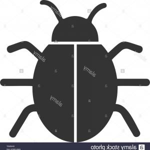 Vector -Borne Infection: Stock Photo Bug Insect Infection Parasite Icon Vector Graphic