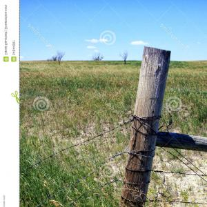 Fence Post Barbed Wire Vector Clip Art: Stock Photo Old Wood Fence Post Country Worn Wooden Strands Barbed Wire Farm Field South Dakota Image