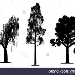 Oak Tree Silhouette Vector Graphics: Oak Tree Silhouette On Wooden Background Vector