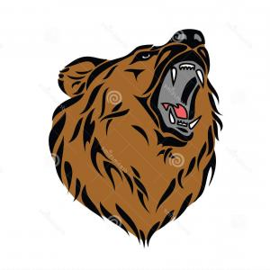 Grizzly Bear Face Vector: Stock Photos Grizzly Bear Head Image
