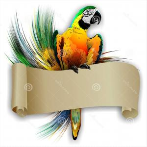 Abstract Vector Art Parrot: Photostock Vector Parrot Logo Abstract Lineart Outline Design Vector Template Bird Sitting In Circle Logotype Line Art