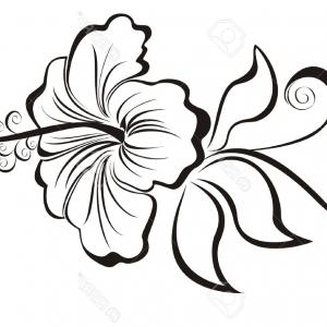 Flower Tattoo Vector: Stock Vector Flowersc Leaves And Swirls Design Element Silhouette In Black This Image Is A Vector Illustration