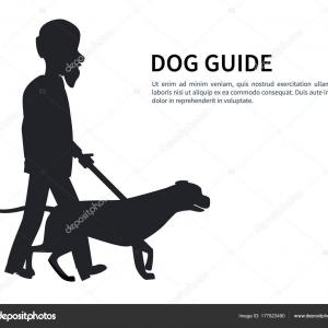 Vector Silhouette Of Man Walking Dog: Stock Vector Man Walking Doberman Pinscher Dog
