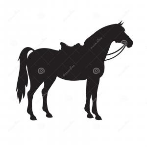 Vector Horse Saddle: Stock Vector White Horse With Saddle
