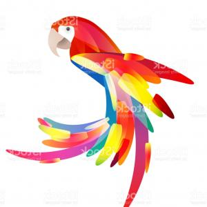 Abstract Vector Art Parrot: Stylized Illustration Of A Parrot With A Multicolored Tail Gm