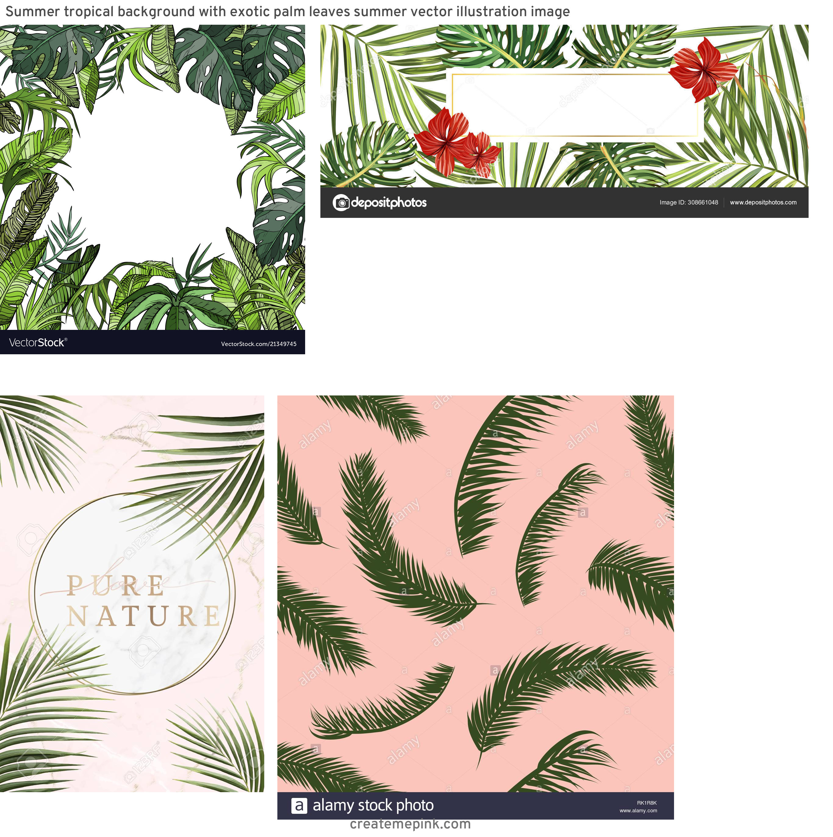 Tropical Background Vector: Summer Tropical Background With Exotic Palm Leaves Summer Vector Illustration Image