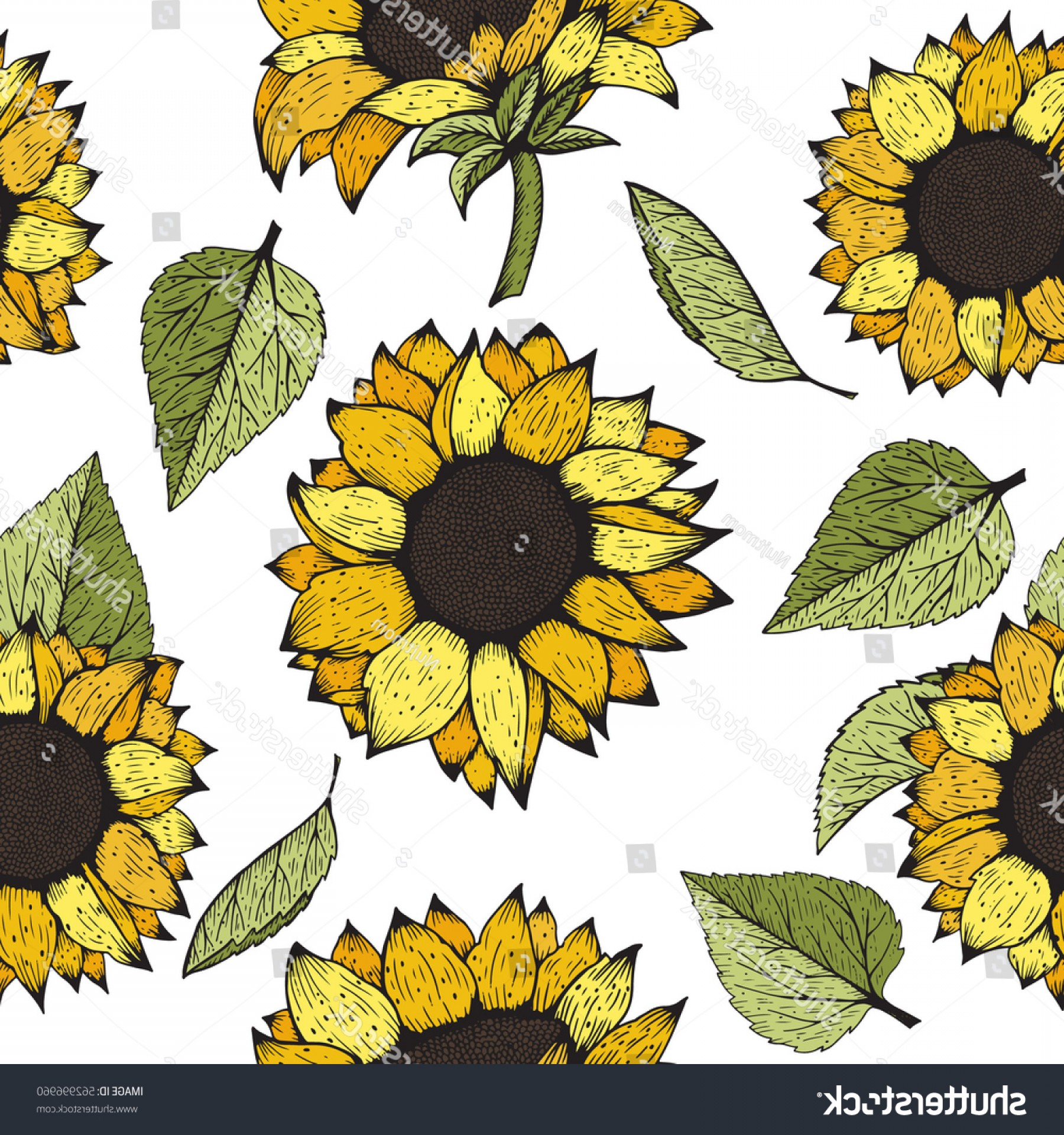 Sunflower Vector Pattern: Sunflower Vector Hand Drawn Sunflowers Seamless