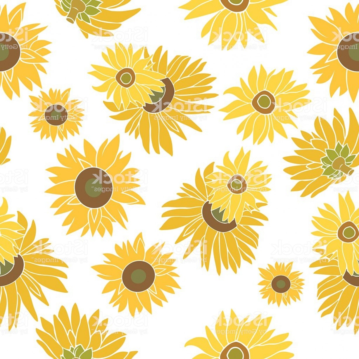 Sunflower Vector Pattern: Sunflower Vector Seamless Pattern On A White Background Gm