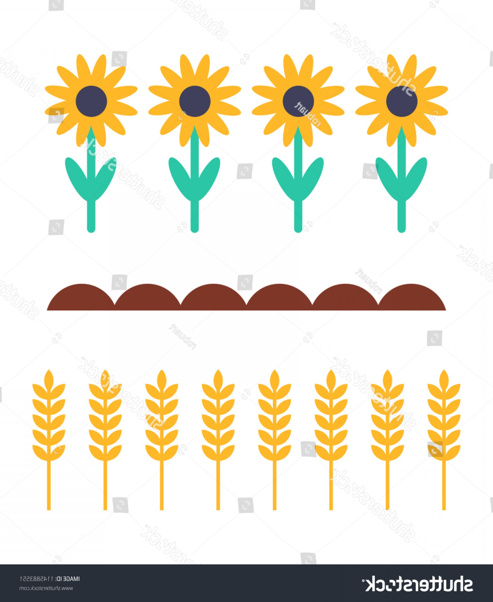 Wheat Flourishes Vector: Sunflowers Wheat Products Farming Plants Ground
