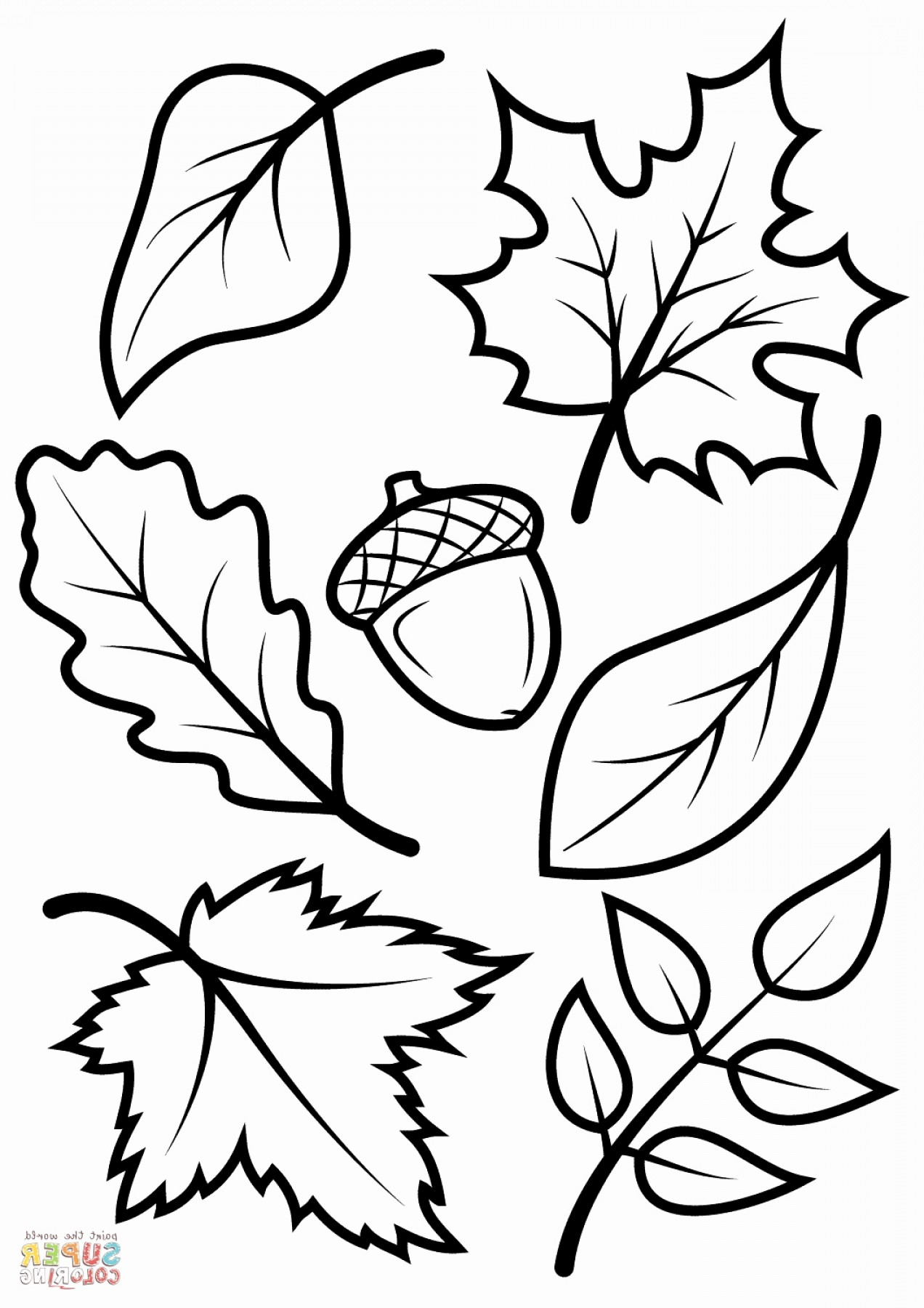 Superman Black And White Vector: Superman Vector Luxury Awesome Autumn Leaf Coloring Sheet Gallery