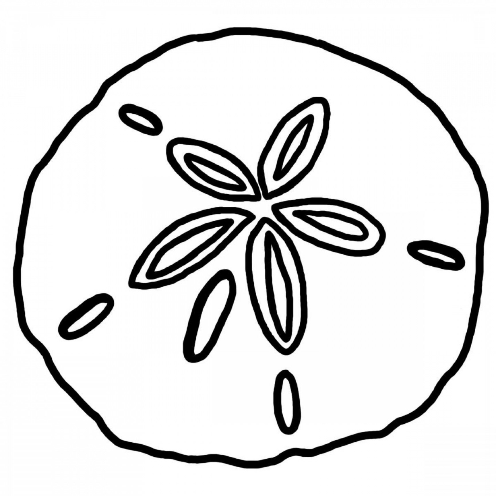 Sand Dollar Silhouette Vector: Sweetlooking Sand Dollar Clipart Cute Latest Best Clip Art Collection Holiday