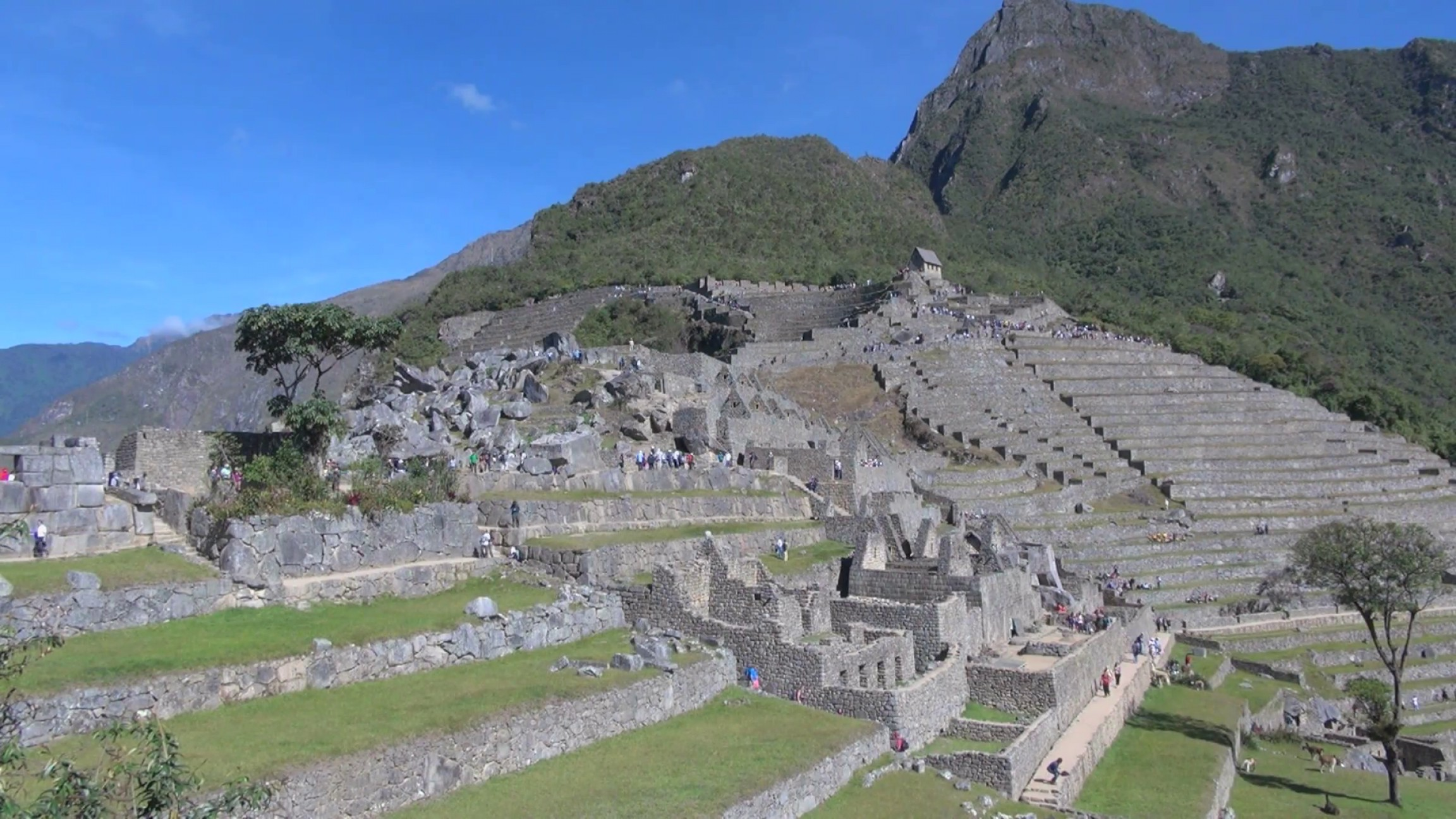 Vector South America Ancient Ruins: Terraces At Ancient Inca Ruins In South America Oxrrt