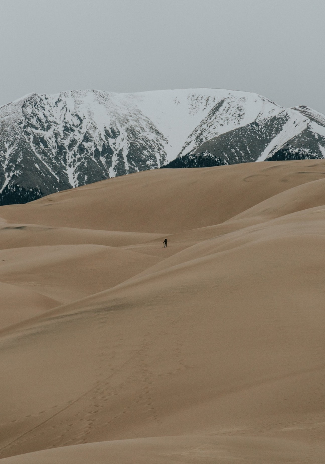 Sand Dune Silhouettes Vectors: The Silhouette Of A Lone Hiker Among Sand Dunes With Snowy Mountains On The Horizon
