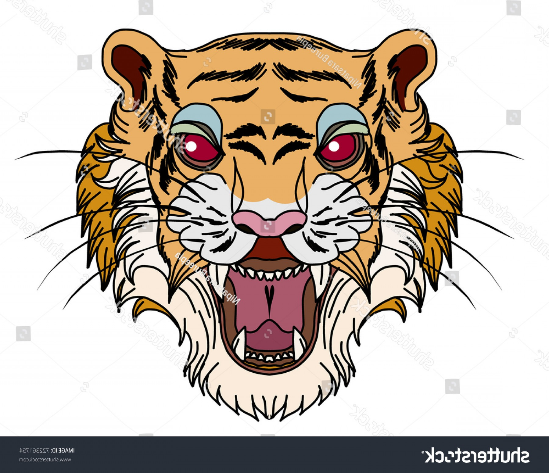Full Body Tiger Roaring Vector: Tiger Face Isolate Vectorhand Drawn Roaring