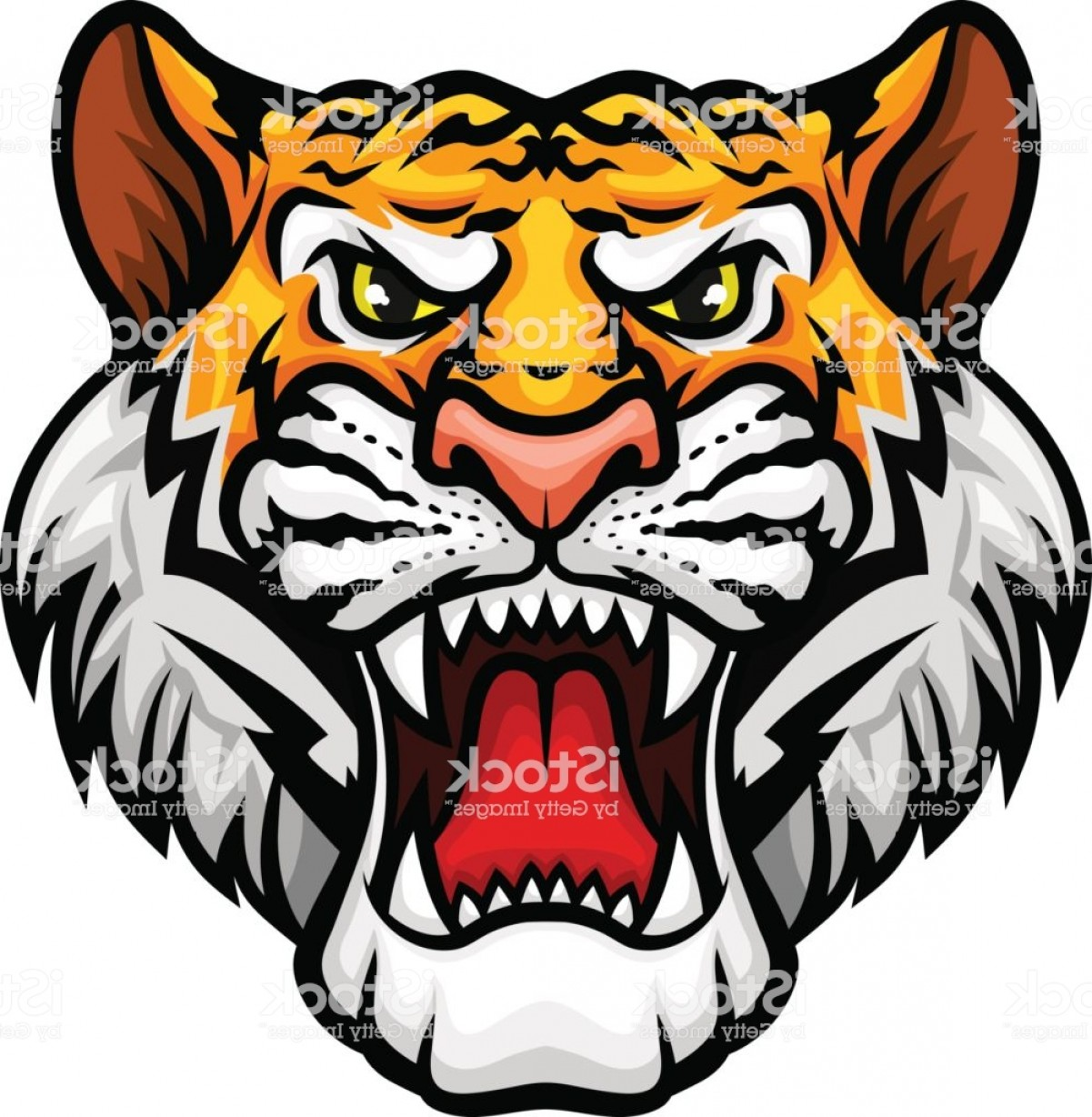 Full Body Tiger Roaring Vector: Tiger Roaring Head Muzzle Vector Mascot Icon Gm