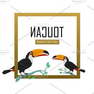 Toucan Vector: Toucan Bird Flat Design Vector
