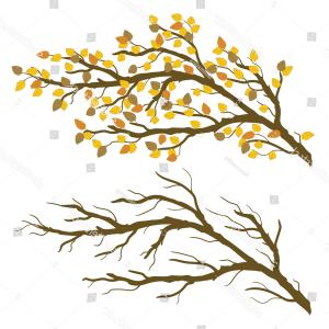 Fall Tree Limb Vector: Autumn Maple Tree Branch With Falling Leaves Vector Clipart