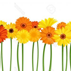 Orange Gerber Daisy Vector: Trendy Gerbera Daisy Isolated Vector Flower Tablecloth