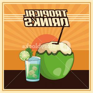 Retro Poster Vector: Tropical Coconut Cocktail Drinks Retro Poster Vector Illustration Graphic Design Sckdqsnjschvna
