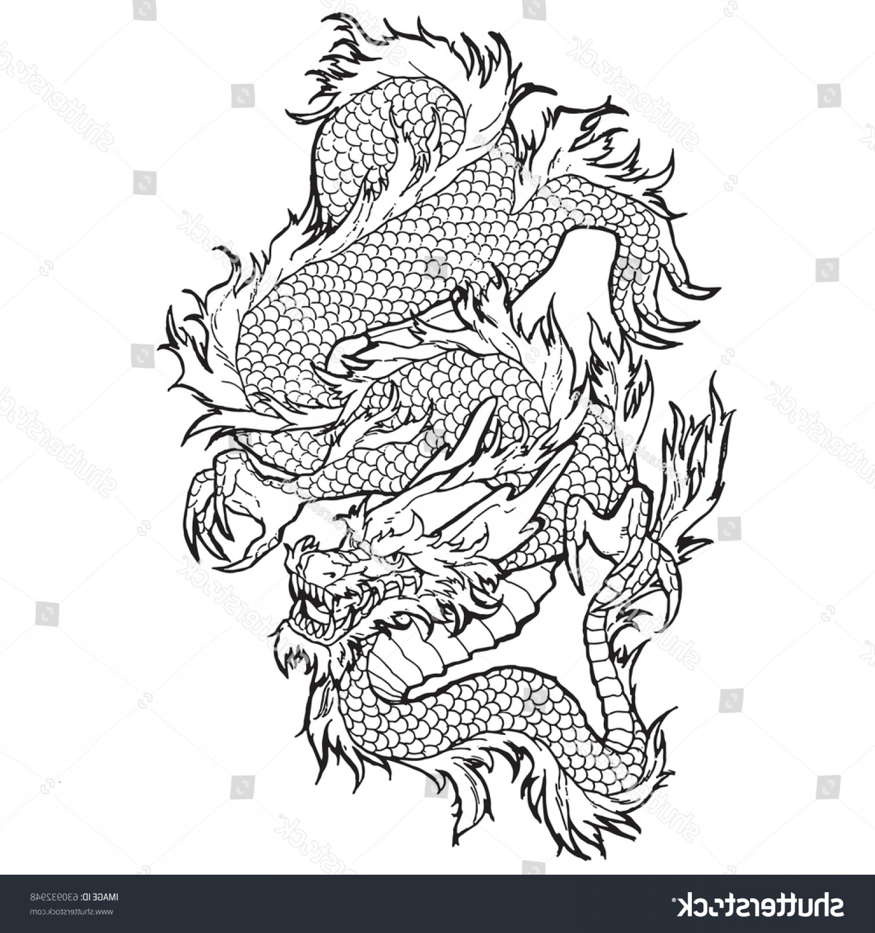 Oriental Dragon Vector: Traditional Asian Dragon Vector Illustration Isolated