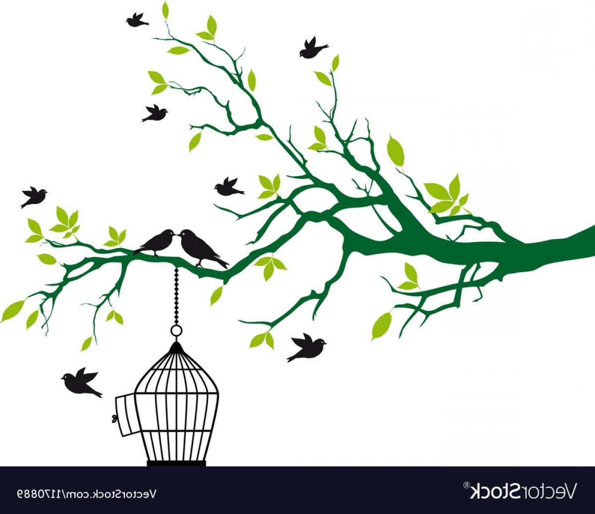 Tree Branch Vector Background: Tree Branch With Birds And Birdcage Vector
