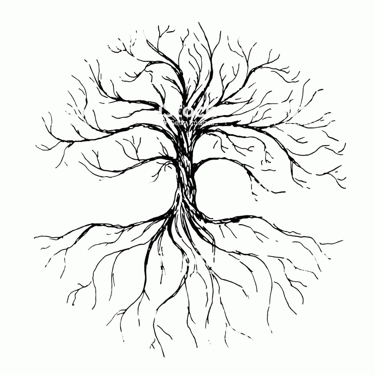 Vector Tree With Roots Drawing: Tree Of Life Vector Illustration With Tree And Roots Silhouette Hand Drawn Ink Gm