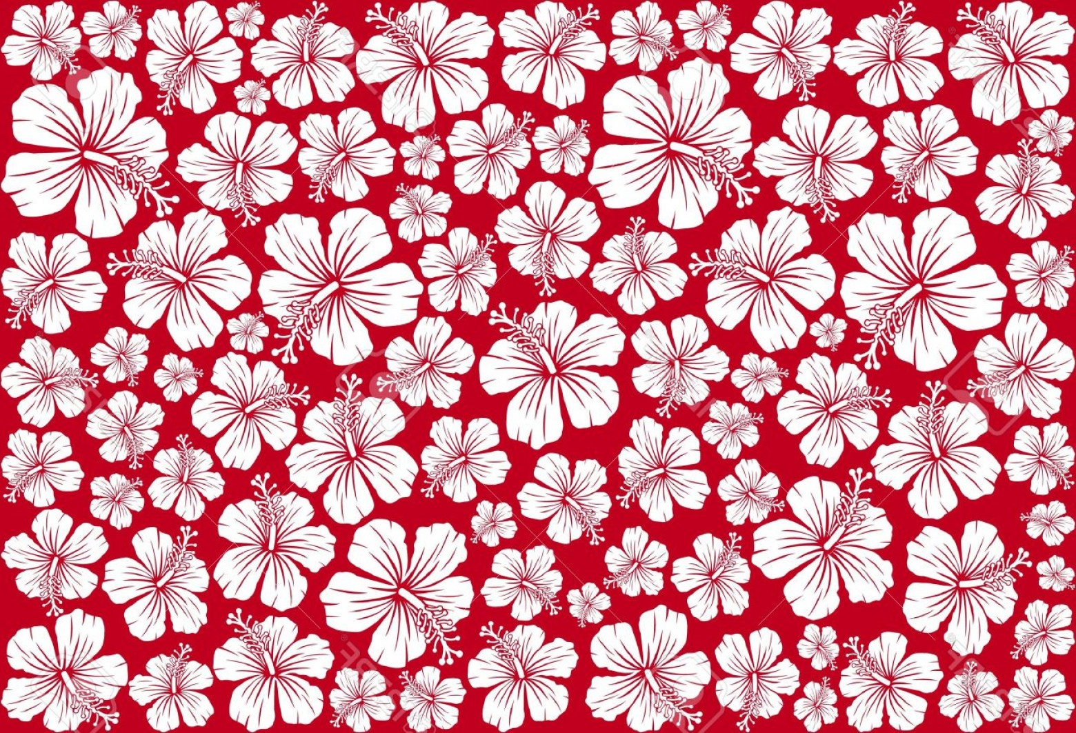 Trendy Photoseamless Floral Pattern Whit Hibiscus Hibiscus Pattern
