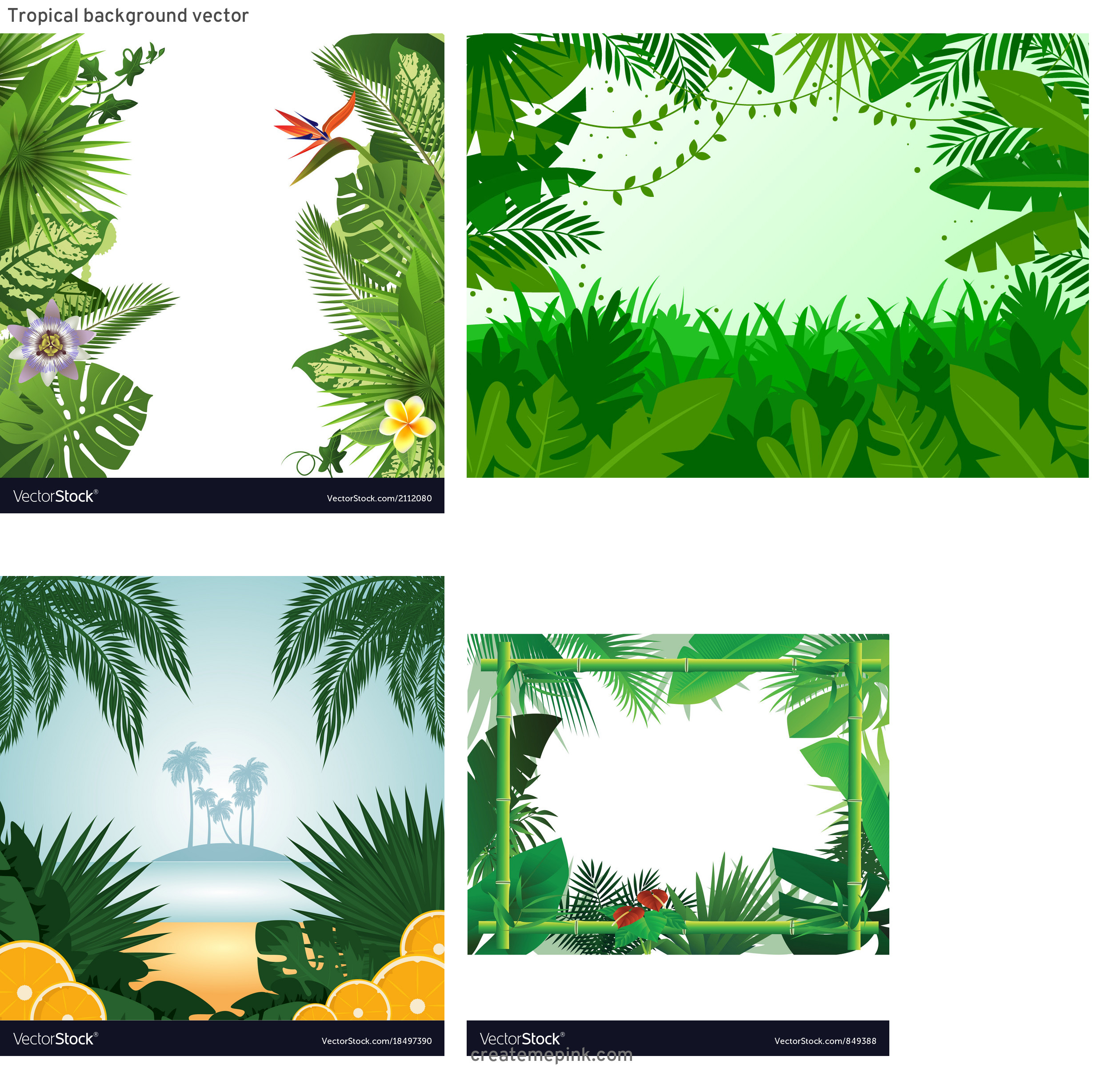 Tropical Background Vector: Tropical Background Vector
