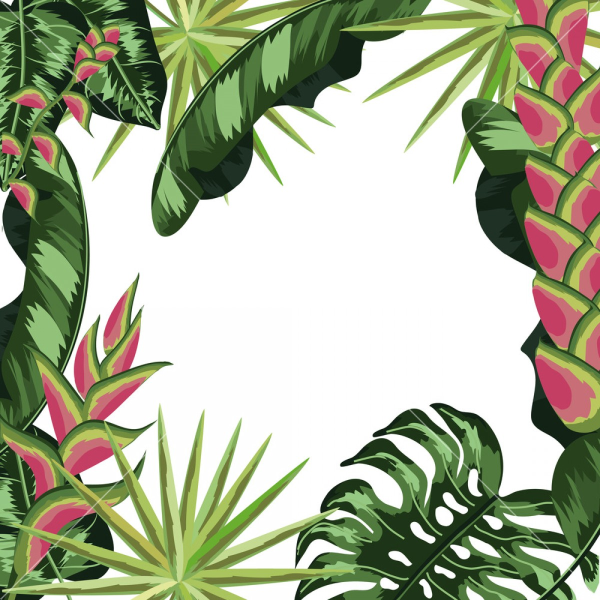 Vector Leaf Graphicd: Tropical Leaves And Flowers Background Pattern Vector Illustration Graphic Design Sumjjykiqjnwmvk